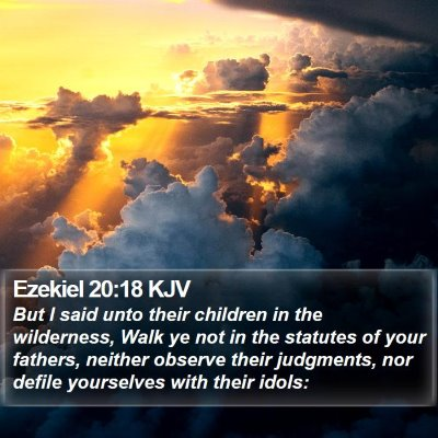 Ezekiel 20:18 KJV Bible Verse Image