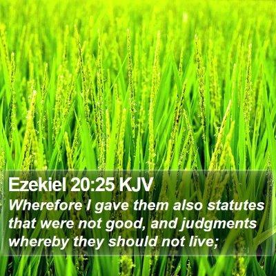 Ezekiel 20:25 KJV Bible Verse Image