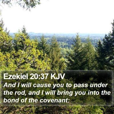 Ezekiel 20:37 KJV Bible Verse Image