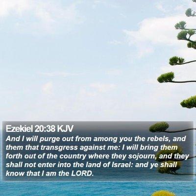 Ezekiel 20:38 KJV Bible Verse Image