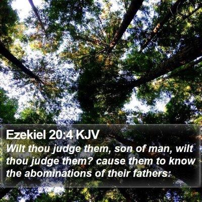 Ezekiel 20:4 KJV Bible Verse Image