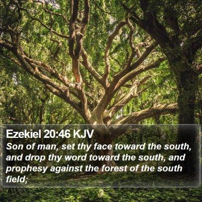 Ezekiel 20:46 KJV Bible Verse Image