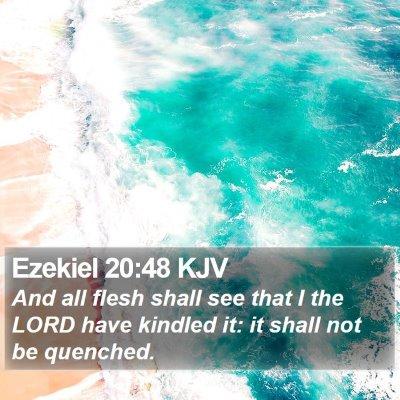 Ezekiel 20:48 KJV Bible Verse Image
