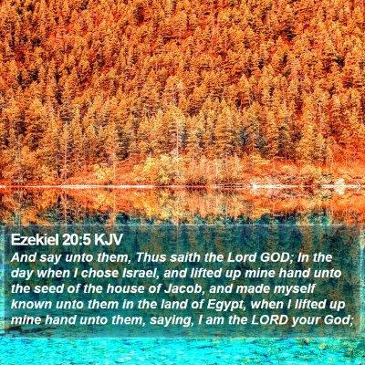 Ezekiel 20:5 KJV Bible Verse Image