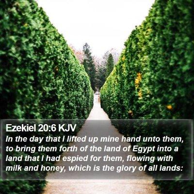Ezekiel 20:6 KJV Bible Verse Image