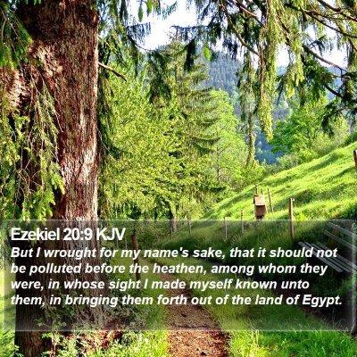 Ezekiel 20:9 KJV Bible Verse Image