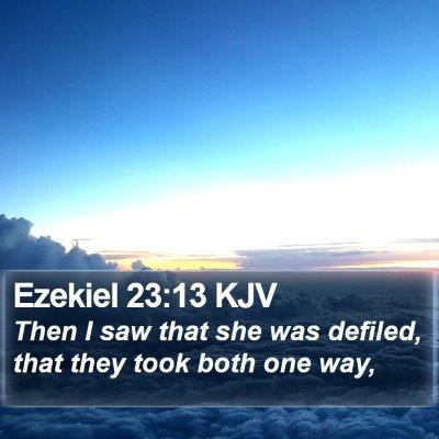 Ezekiel 23:13 KJV Bible Verse Image