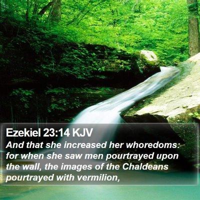 Ezekiel 23:14 KJV Bible Verse Image
