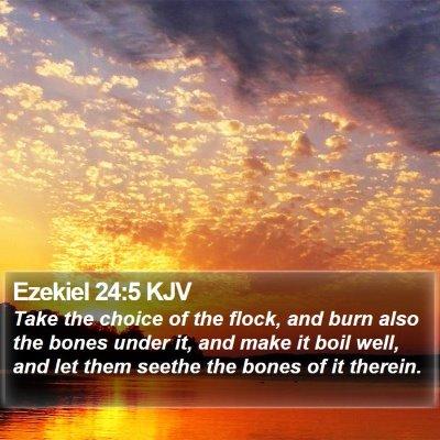 Ezekiel 24:5 KJV Bible Verse Image