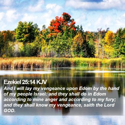 Ezekiel 25:14 KJV Bible Verse Image