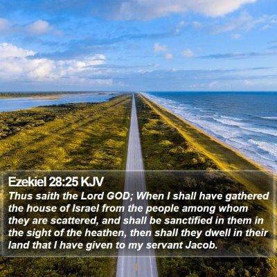 Ezekiel 28:25 KJV Bible Verse Image