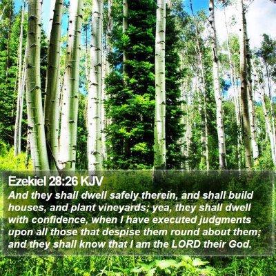 Ezekiel 28:26 KJV Bible Verse Image