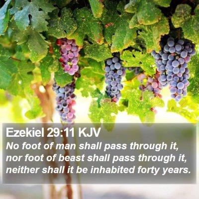 Ezekiel 29:11 KJV Bible Verse Image