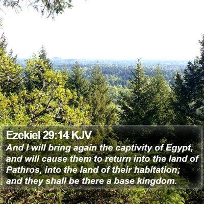 Ezekiel 29:14 KJV Bible Verse Image