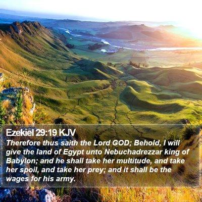 Ezekiel 29:19 KJV Bible Verse Image