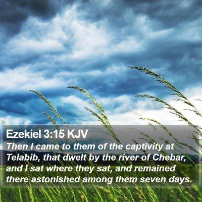 Ezekiel 3:15 KJV Bible Verse Image