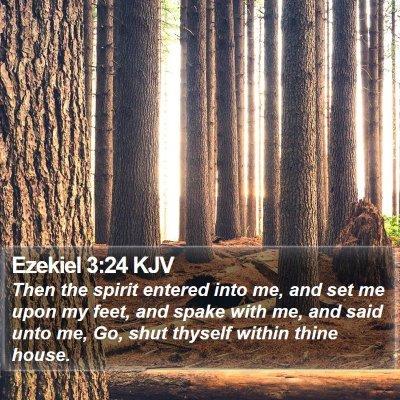 Ezekiel 3:24 KJV Bible Verse Image