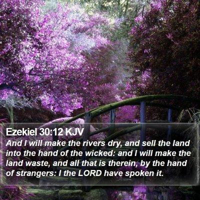 Ezekiel 30:12 KJV Bible Verse Image