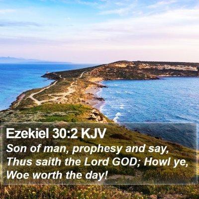 Ezekiel 30:2 KJV Bible Verse Image