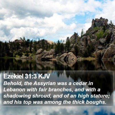Ezekiel 31:3 KJV Bible Verse Image