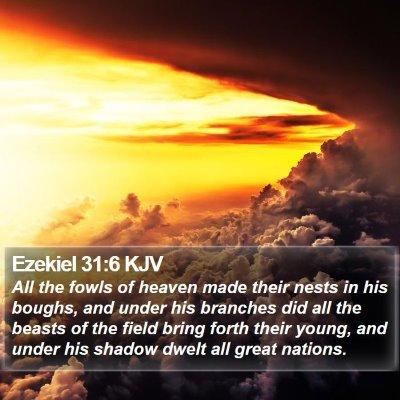 Ezekiel 31:6 KJV Bible Verse Image