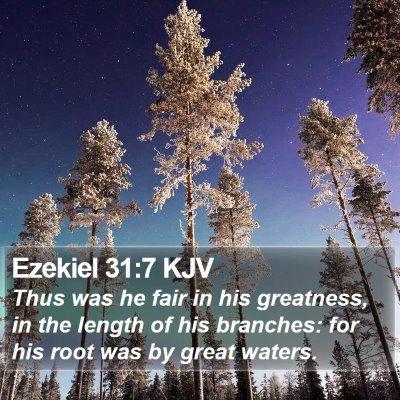 Ezekiel 31:7 KJV Bible Verse Image