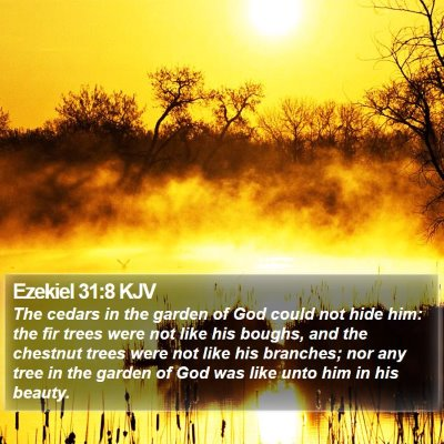 Ezekiel 31:8 KJV Bible Verse Image