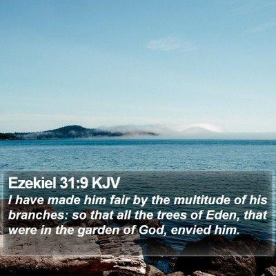 Ezekiel 31:9 KJV Bible Verse Image