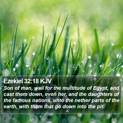 Ezekiel 32:18 KJV Bible Verse Image