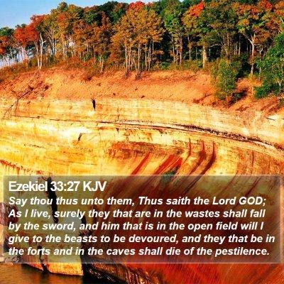 Ezekiel 33:27 KJV Bible Verse Image