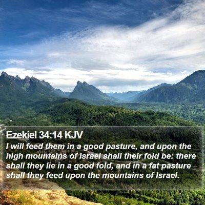 Ezekiel 34:14 KJV Bible Verse Image