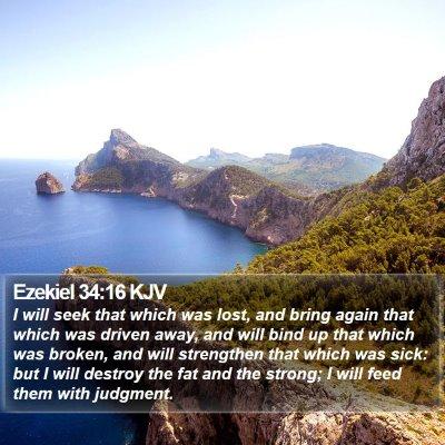 Ezekiel 34:16 KJV Bible Verse Image