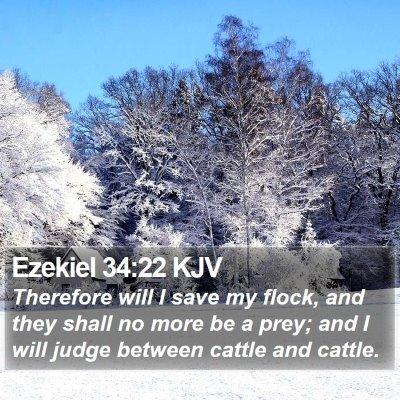 Ezekiel 34:22 KJV Bible Verse Image