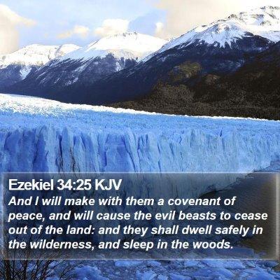 Ezekiel 34:25 KJV Bible Verse Image