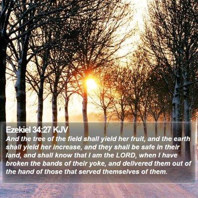 Ezekiel 34:27 KJV Bible Verse Image