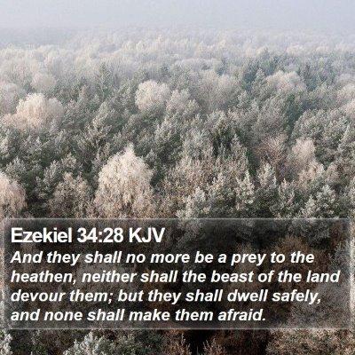 Ezekiel 34:28 KJV Bible Verse Image