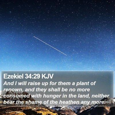 Ezekiel 34:29 KJV Bible Verse Image