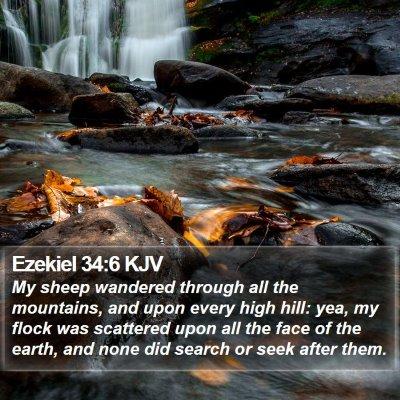 Ezekiel 34:6 KJV Bible Verse Image