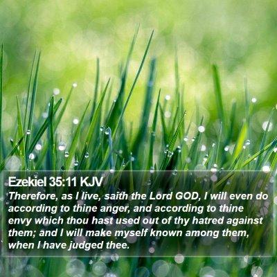 Ezekiel 35:11 KJV Bible Verse Image