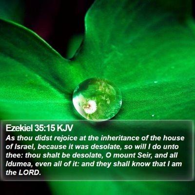 Ezekiel 35:15 KJV Bible Verse Image