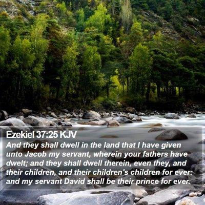 Ezekiel 37:25 KJV Bible Verse Image