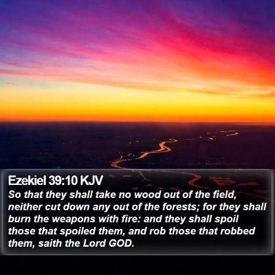 Ezekiel 39:10 KJV Bible Verse Image
