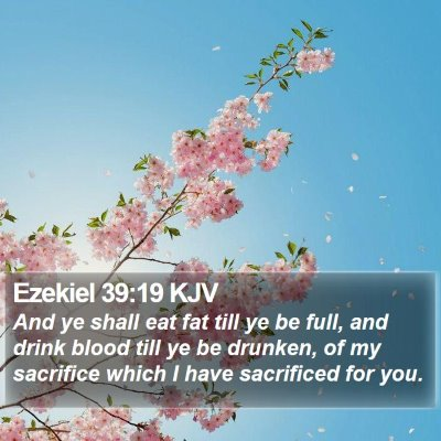 Ezekiel 39:19 KJV Bible Verse Image
