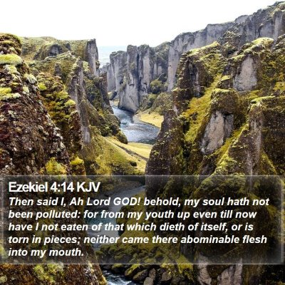 Ezekiel 4:14 KJV Bible Verse Image