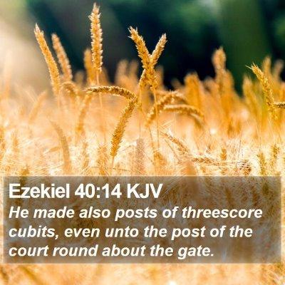 Ezekiel 40:14 KJV Bible Verse Image
