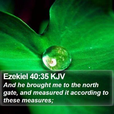 Ezekiel 40:35 KJV Bible Verse Image