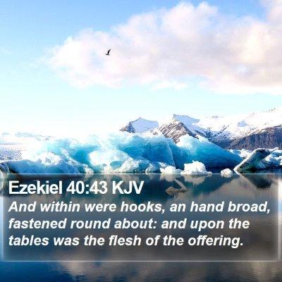 Ezekiel 40:43 KJV Bible Verse Image
