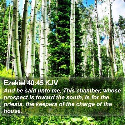 Ezekiel 40:45 KJV Bible Verse Image