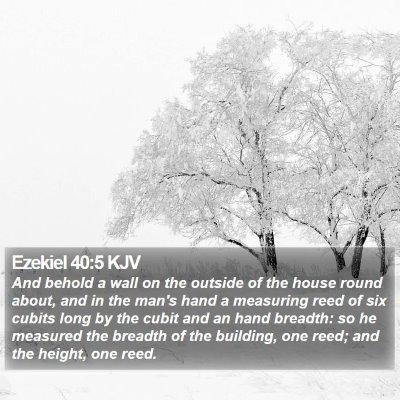 Ezekiel 40:5 KJV Bible Verse Image