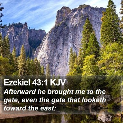 Ezekiel 43:1 KJV Bible Verse Image